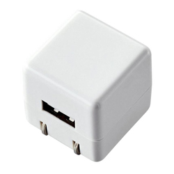 Cube-Type AC Charger (Long Life 1 A For DAP)