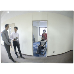 Mirror for Aisle EA724ZM-6