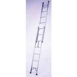 Two-section Ladder EA902-40