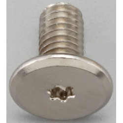 TORX Super Brazier Head Screw EA949TC-52