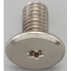 TORX Super Brazier Head Screw EA949TC-53