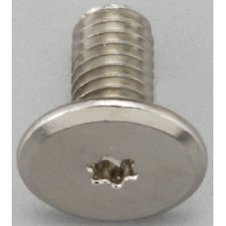 TORX Super Brazier Head Screw EA949TC-54