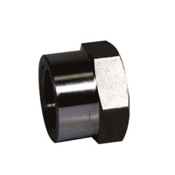 High Pressure Screw-in Fitting PT CA/Cap