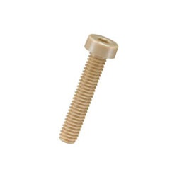PEEK Hexagon Socket Low Head Bolt / PECL-0000