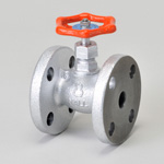 Malleable Valve, General-Purpose 10K Type, Globe Valve, Flanged, Reinforced PTFE Disk Installed