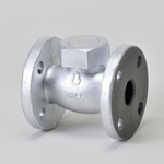 Malleable Valve, 10K Type, Check Valve (Lift Type), Screw-In, Strengthened PTFE Disk Equipped