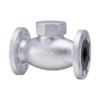 General Purpose Ductile Iron 20K Lift Check Valve Flange