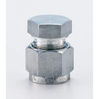 Stainless Steel High Pressure Fitting Cap
