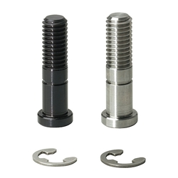 Bearing Shaft Screws with Retaining Rings - Screw Type