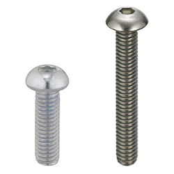 Hexagon Socket Button Head Cap Screws