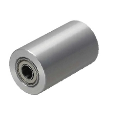 Rollers - With Bearings (L=15 ~ 100) - Straight / Crowned