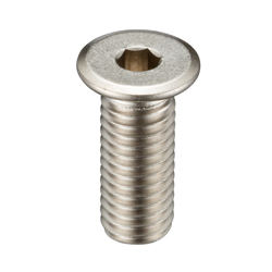 Ultra Low-Profile Head Bolt With Hex Socket SSH