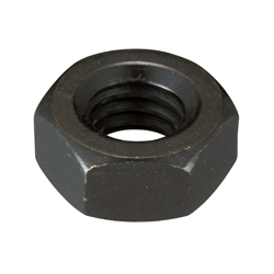 Hex Nut 2 Types Wit