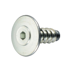 Thin, Ultra-Low Head TH Type Tapping Screw with Hexagonal Socket, B=0