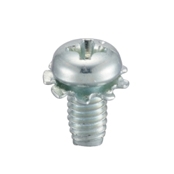 Phillips Head S Type Pan Screw LO=2