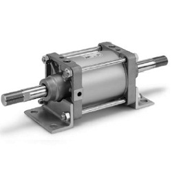 CS2W Series Double Rod Type Air Cylinder