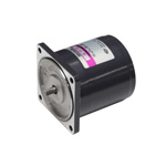 Induction Motor 25W [S8I25]