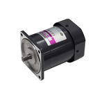 Induction Motor 60W [S9I60]